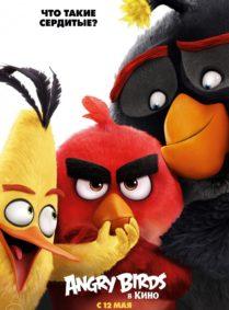 Andry Birds в кино