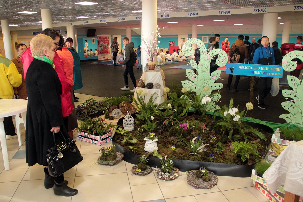 Выставка Барановичского эколого-биологического центра