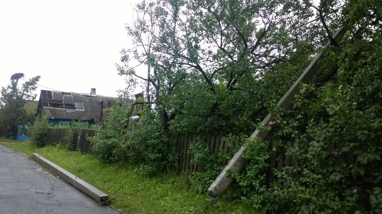 В агрогородке Перховичи повалены столбы и деревья. Фото: Юлия Парханович