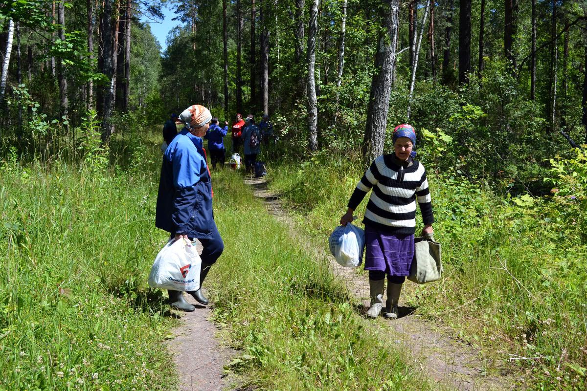 В 14 часов ягодники выходят из леса.
