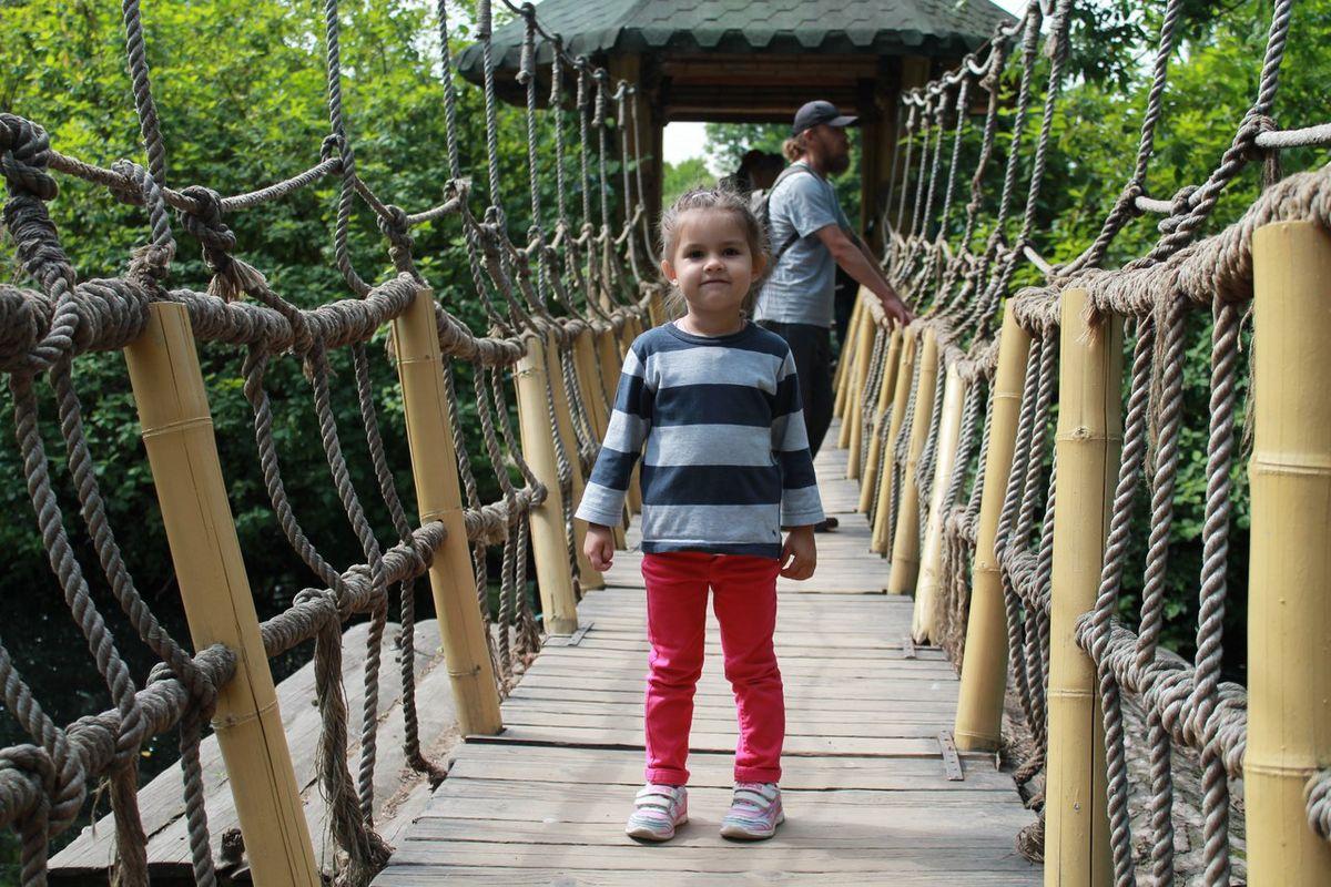 Алиса в петербургском зоопарке в 2015 году. Фото: архив Яны ВИТКО