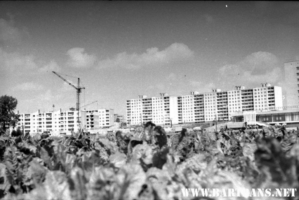 Северный микрорайон, 1986 год. Вид с озера на магазин «Северный». Теперь – «Златка». Фото: сайт bartrans.net
