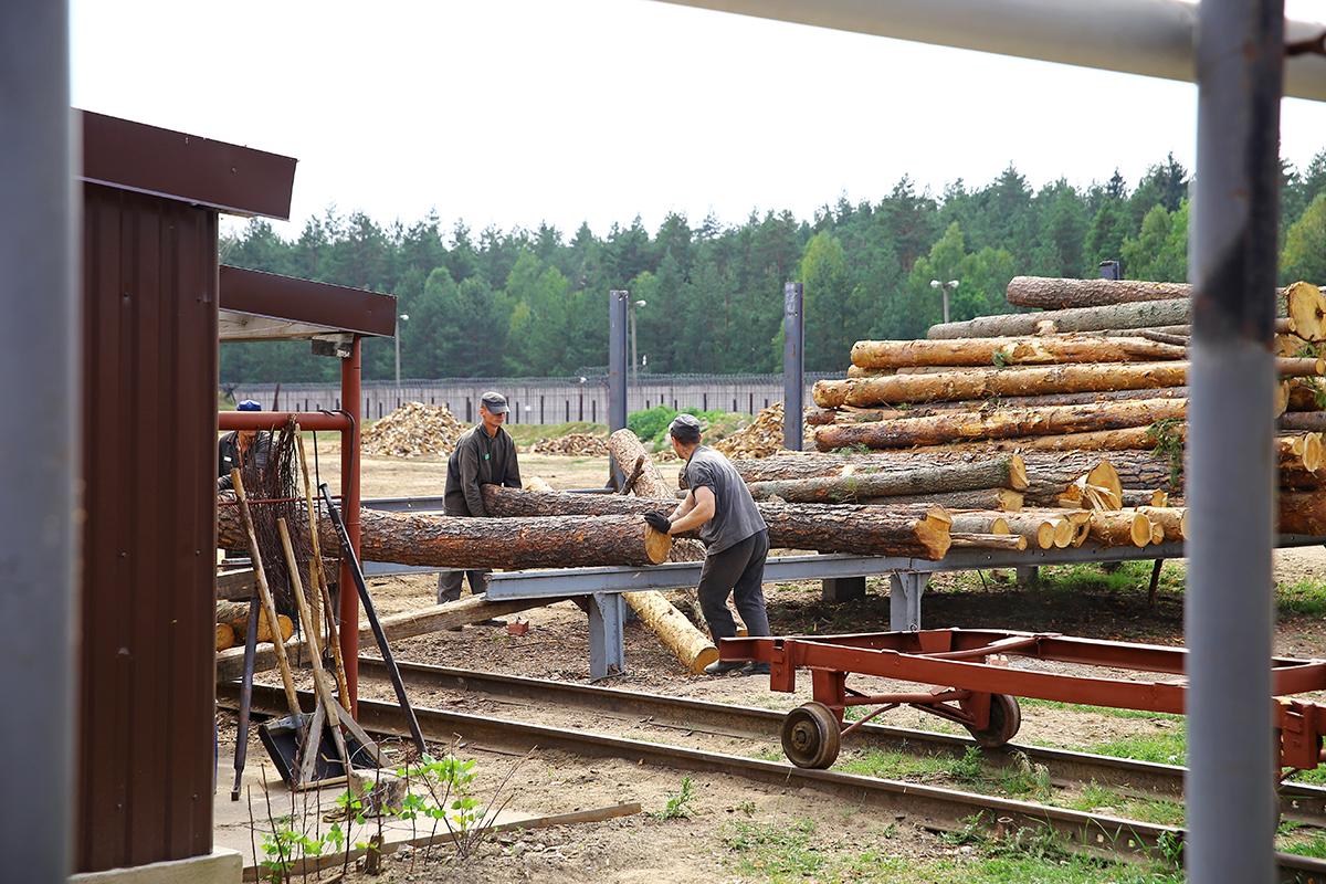 Осужденные, работающие на деревообработке.
