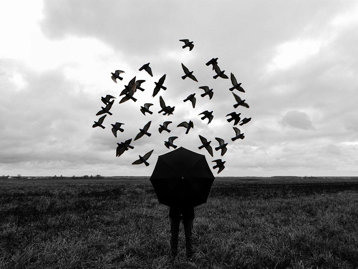 «Полет». Фото: личный архив Александра МЕКЛЕРА
