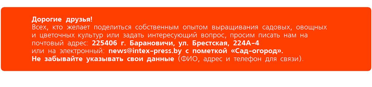 Как приготовить почвогрунт для рассады?* — Intex-press. Последние новости города Барановичи, Беларуси и Мира