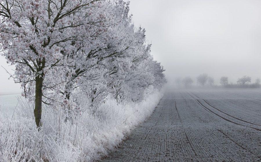 Небольшой снег идо25 градусов мороза ожидается в Белоруссии 25февраля
