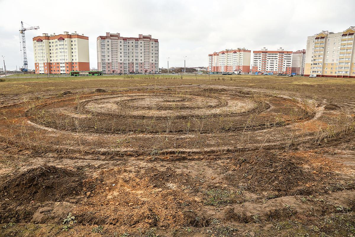 Будущий зеленый лабиринт в Боровках. Фото: архив Intex-press