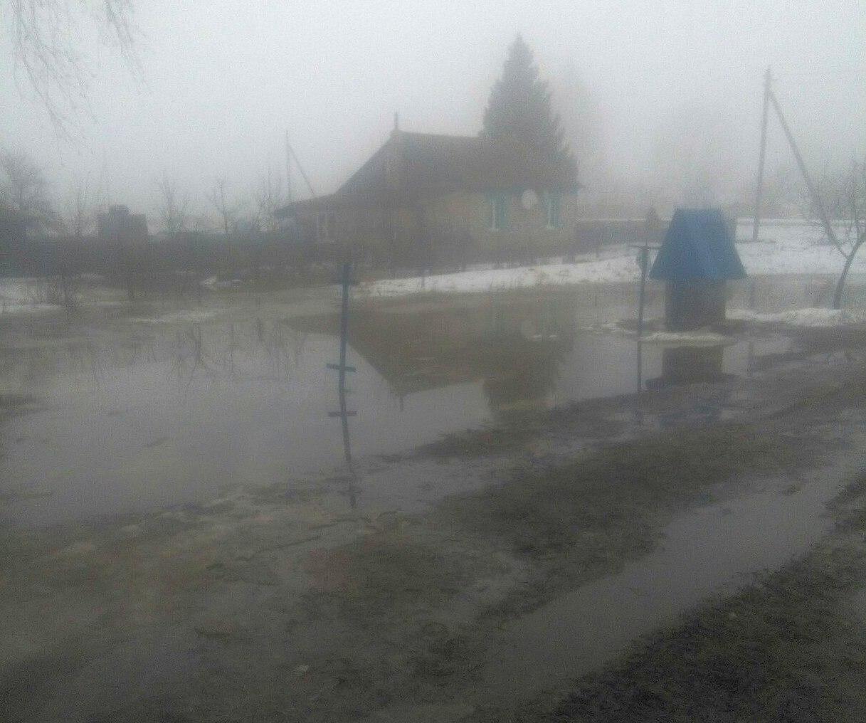 Деревня Застаринье. Фото: Ирина СКВАРЧИНСКАЯ