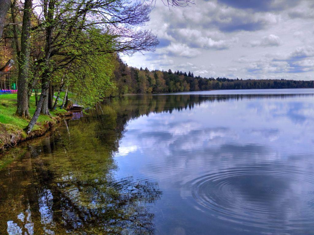 Фото: http://svitiaz.na.by