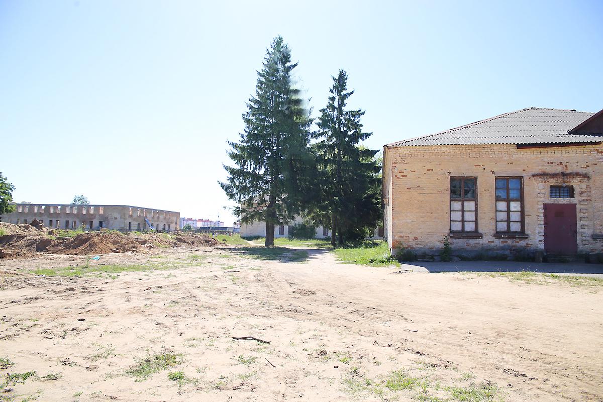 Деревья при строительстве домов планируют срубить. Фото: Евгений ТИХАНОВИЧ