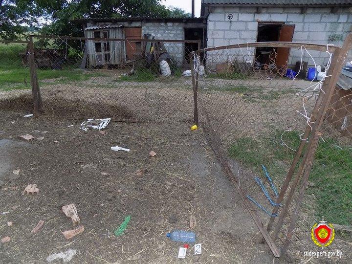 В Каменецком районе годовалая девочка отравилась жидкостью для травли колорадского жука — Intex-press. Последние новости города Барановичи, Беларуси и Мира
