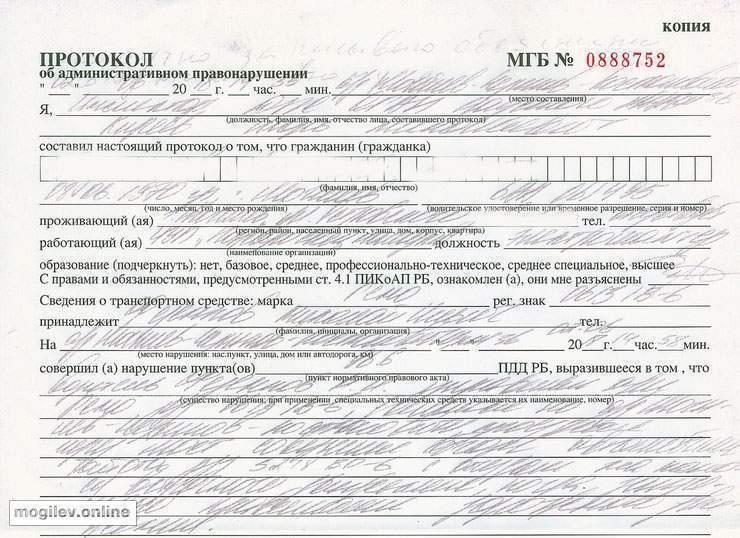 Фото: http://mogilev.online