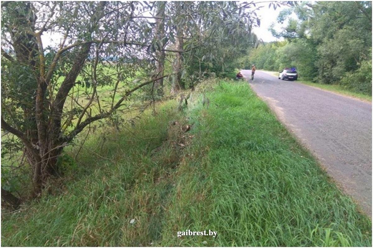 Под Барановичами мотоциклист-бесправник съехал в кювет и врезался в дерево — Intex-press. Последние новости города Барановичи, Беларуси и Мира