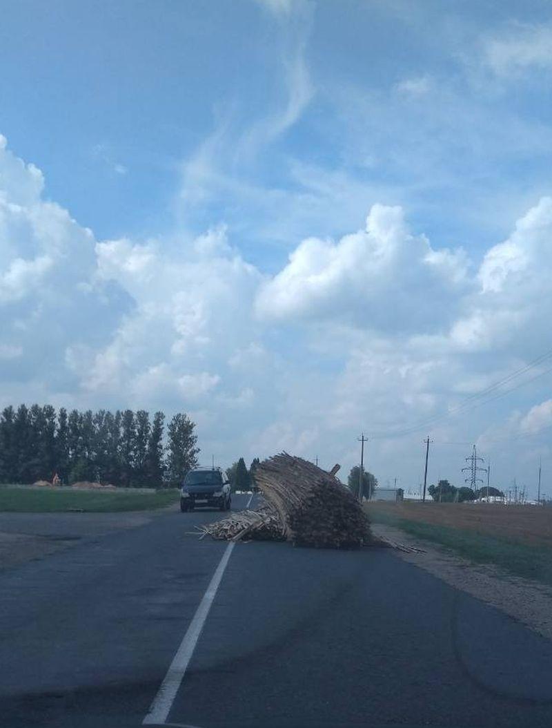 Фотофакт. В Барановичском районе с грузовика на ходу упали незакрепленные доски — Intex-press. Последние новости города Барановичи, Беларуси и Мира
